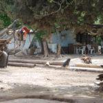 Pobreza e infancia: La UCR y el PRO cuestionaron al gobierno provincial