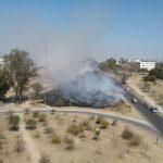 """Bronca y desazón por la quema del """"bosquecito nativo"""" de la UNC"""