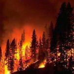 El cambio climático podría provocar más muertes prematuras a causa de la contaminación