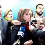 La oposición pidió derogar el decreto que permite a las Fuerzas Armadas operar en seguridad interior