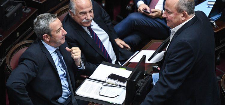 Aborto: los senadores del radicalismo terminaron inclinando la balanza a favor de los celestes