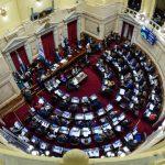 El Senado rechazó el proyecto de Ley de Interrupción Voluntaria del Embarazo